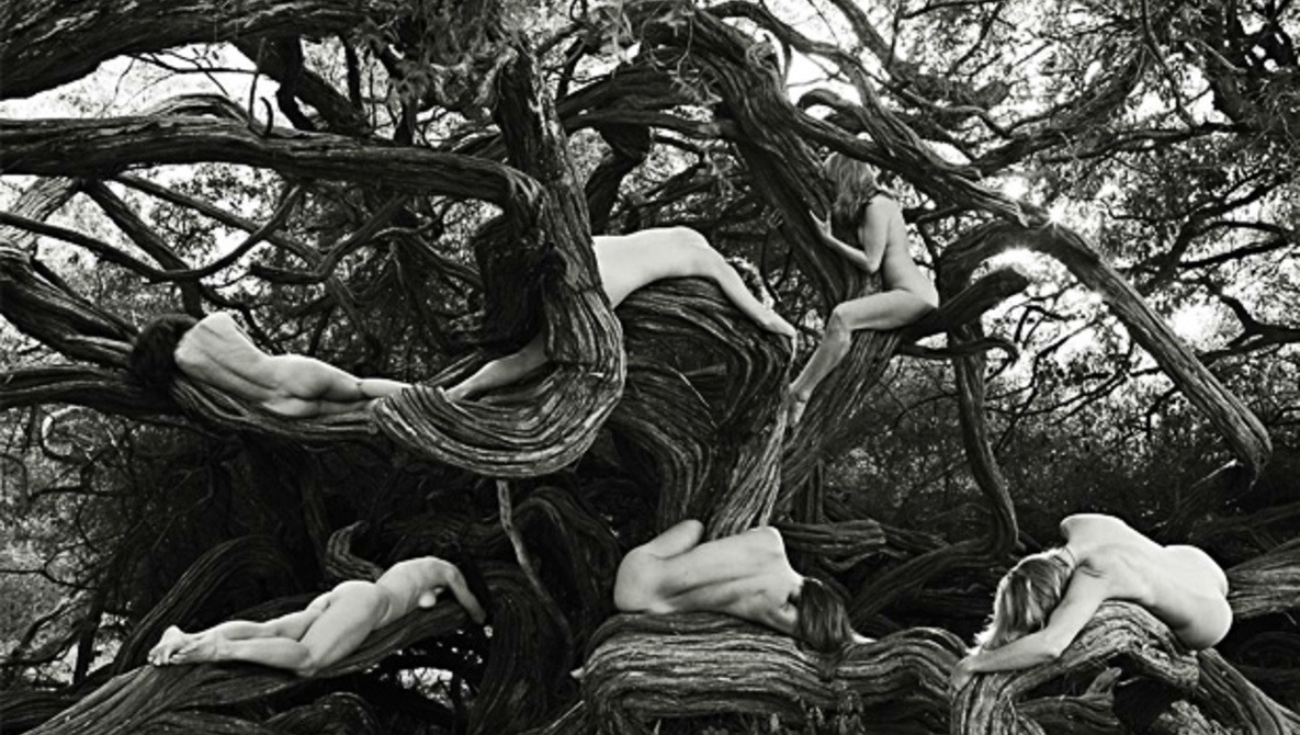 [Video] Fstoppers Original:  The Tree Spirit Project, Nudes In Nature