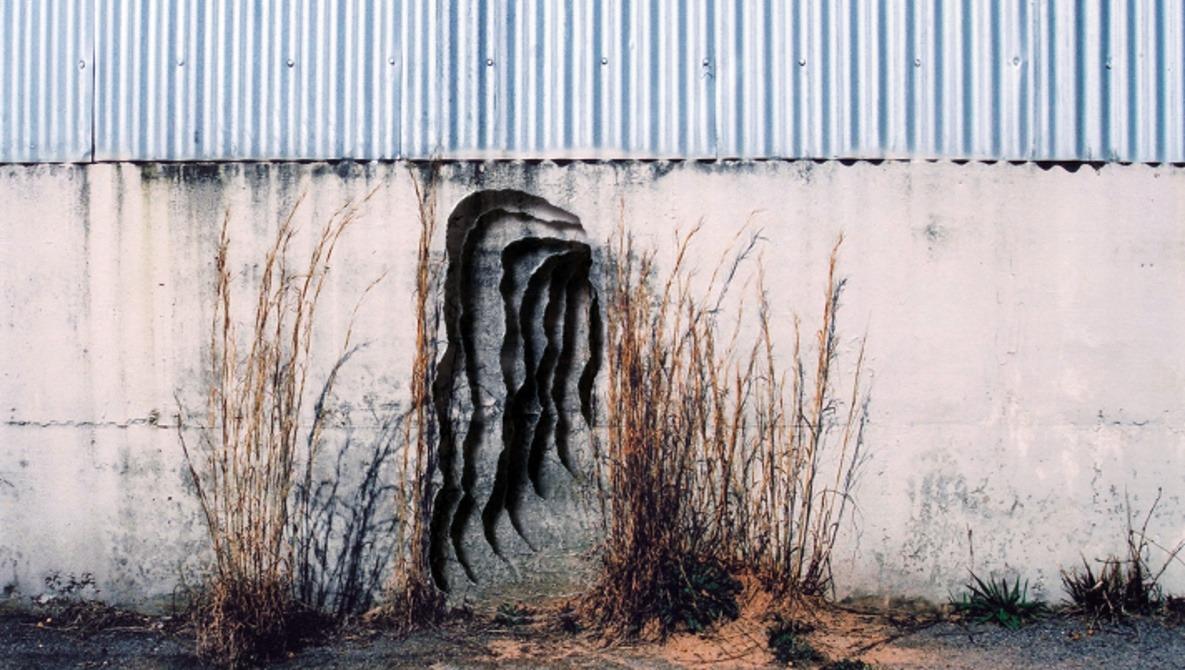 Scott Hazard's Series of Torn Photographs