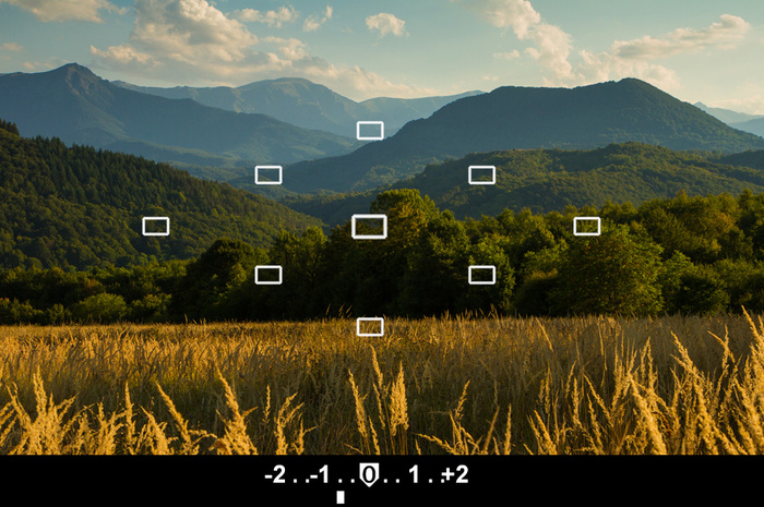Understanding Your Camera's Internal Light Meter and Metering Modes