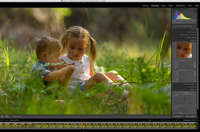 Sharpening in Lightroom: Make the Most Out of the Detail Panel