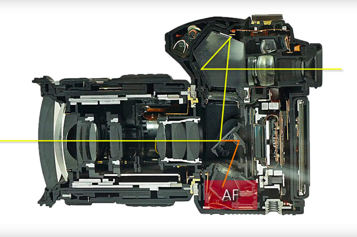 How Autofocus in DSLRs Works and Why It Sometimes Fails