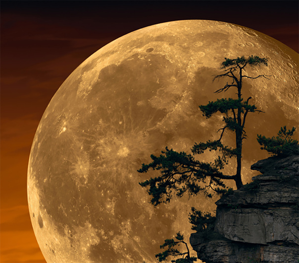 Peter Lik's 'Moonlit Dreams' Confirmed a Composite