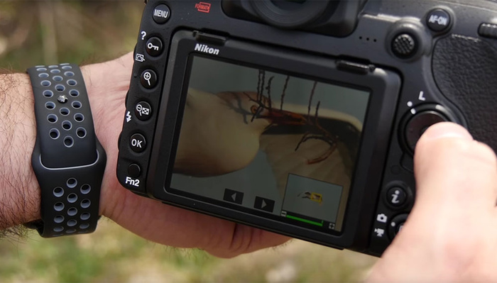 Seven More of the Best Nikon Tricks