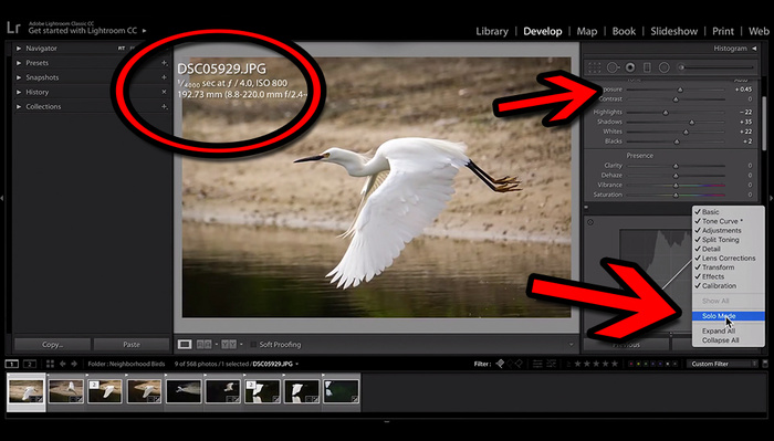 Two Quick Changes in Lightroom That You'll Wish You Made Years Ago