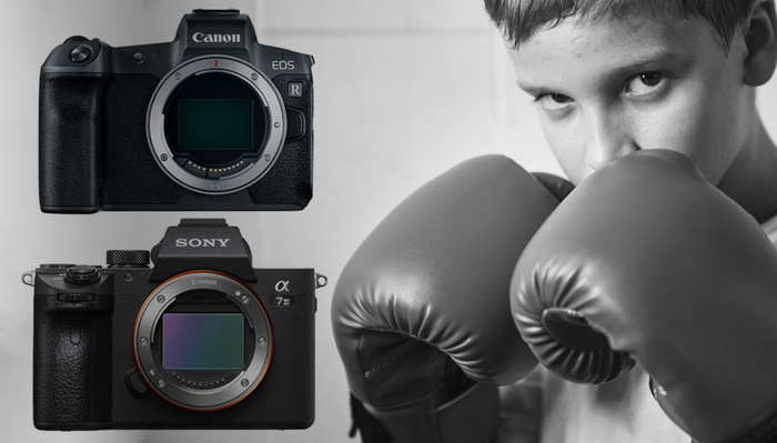 Sony a7 III Versus Canon R: Which Is Better?