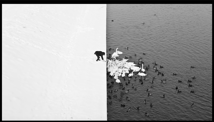 Nine Tips to Improve Your Black and White Photography