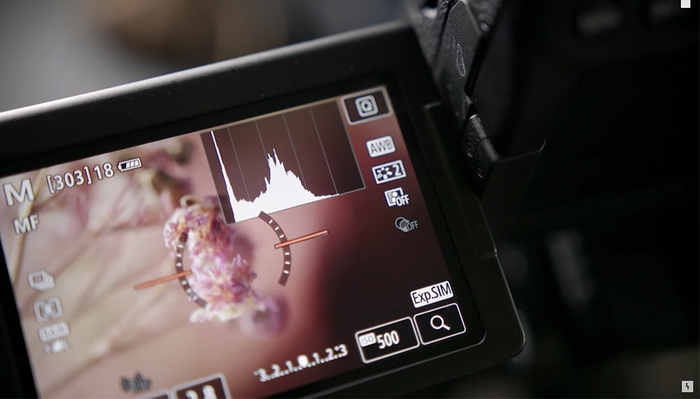 Three Helpful Macro Photography Tips in Just Two Minutes
