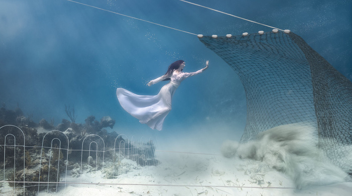 Underwater Photography to Take a Powerful Stand Against Trawling