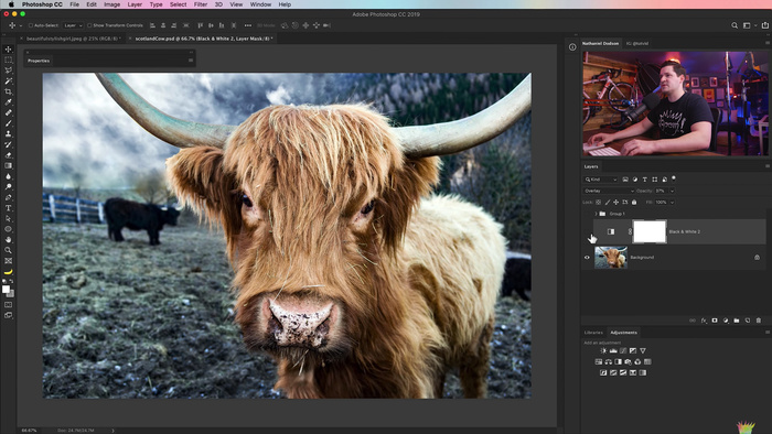How to Create LUTs in Photoshop for Better Color Grading
