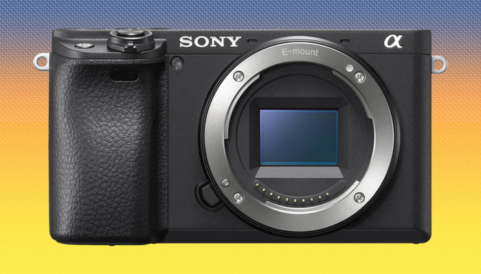 Sony a6400 Receives Animal Eye AF Firmware Update