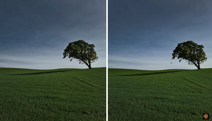 Lightroom Versus Luminar 4: Which Is Right for Your Needs?