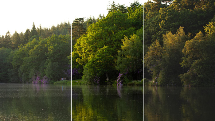 Do Lightroom Profiles Really Make a Difference in Landscape Photography?
