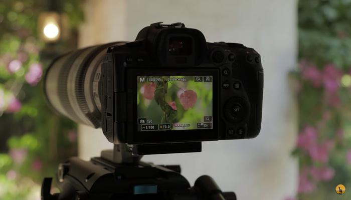 Should You Use Teleconverters Instead of Longer Lenses?