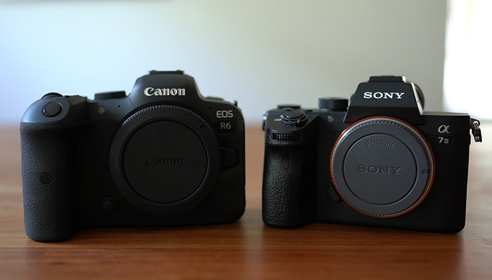How Do the Canon EOS R5 and R6 Compare to the Sony a7R IV and a7 III?