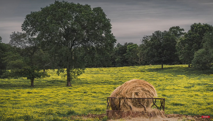 8 Common Beginner Landscape Photography Mistakes