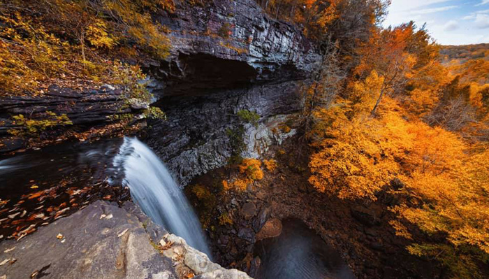 Catch Those Beautiful Autumnal Photographs Before Winter Comes