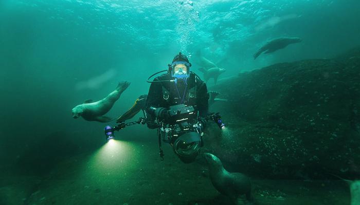 How National Geographic and BBC Filmmaker Bertie Gregory Captures Animal Behavior