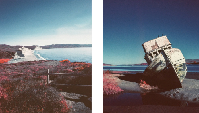 What Would You Shoot With One of the Few Remaining Rolls of Kodak Aerochrome?