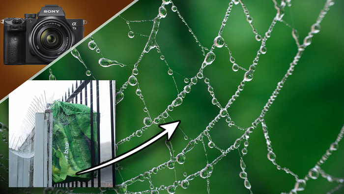Use Trash To Make DIY Backgrounds for Macro Photographs