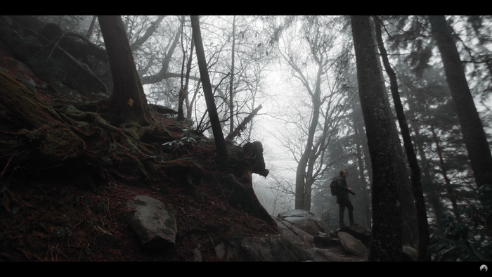 Relax by Watching Moody Landscape Photography in the Great Smoky Mountains
