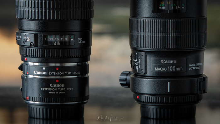 Which Is the Better Choice, A Macro Lens or Extension Tubes?