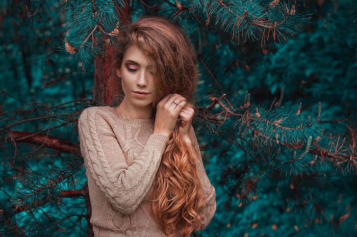 Blue spruce | Fstoppers