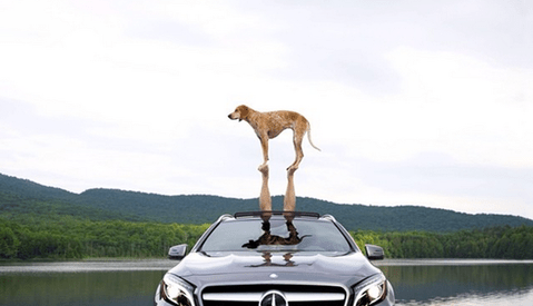 Mercedes-Benz USA Wins on Instagram (Again) with #GLAPacked Campaign