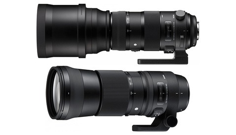 Both Versions of Sigma's 150-600mm f/5-6.3 DG OS HSM Now Available for Pre-Order