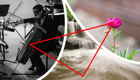 The Exposure Triangle: Understanding How Aperture, Shutter Speed, and ISO Work Together