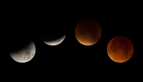Did You Photograph the Rare Supermoon Lunar Eclipse? Here Are Some of the Best Shots from Social Media