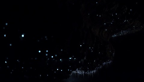 Canon's New Ultra-Sensitive Camera Shows Incredible Video of the Milky Way and an Awesome Glowworm Cave