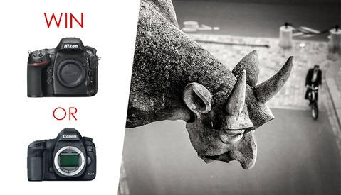 Win a Canon 5D MK III or Nikon D800 in This Free Photo Contest!
