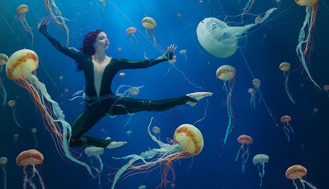 Jellyfish Soup: Combining Photography and Conservation