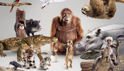 'Spy in the Wild', a New BBC Series uses Animatronic Animals Rigged with Cameras to Film Wildlife