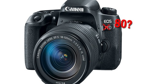 Confused About Where the New Canon 77D Fits? Then Watch This Video