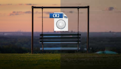 Photographers Everywhere Are Stunned After Raw Tests Positive for Compression