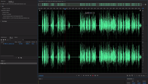 How to Eliminate Audio Noise with Adobe Audition and Premiere Pro