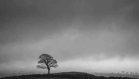 How to Create a Moody Black and White Landscape Image in Lightroom