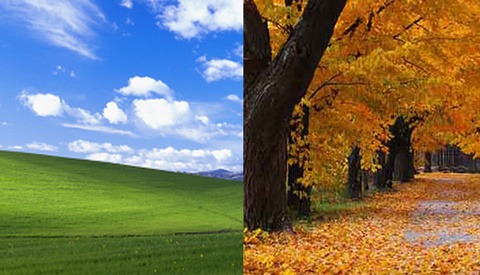 $100,000 Vs. $45: The Differences Paid to the Photographers Behind These Microsoft Windows Images