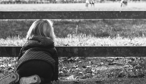 little girl looking through fence. toddler on hands and knees outside. black and white photo of a child looking at two horses in a field.