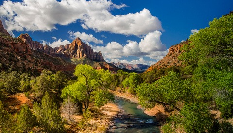 No Tripods Allowed: Zion National Park's New Rules for Photography Workshops