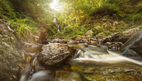 How to Shoot Long Exposures in a Stream with No Tripod