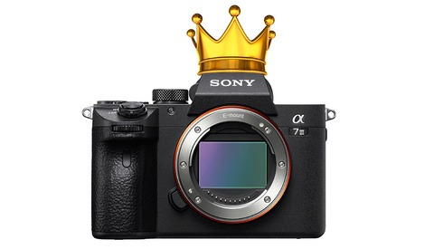 Sony a7 III Versus the Best of the Rest: How Does It Compare?
