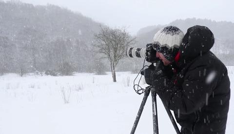 Blizzard Photography Looks Like Fun