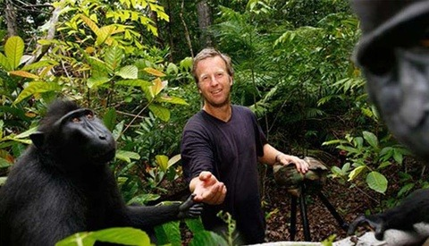Monkey Lawsuit Still Ongoing as Court Dismisses Agreement Between Photographer and PETA