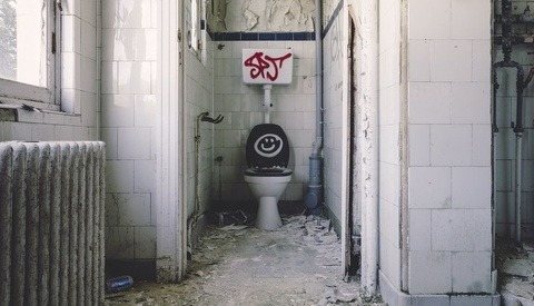 Feeling Flushed: The Toilet as a Still Life