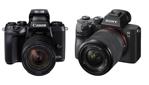 Mirrorless Smackdown: How Photographers Feel About the Future of Canon and Nikon Cameras