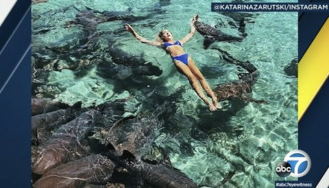 Instagram Model Attacked by Shark, Pulled Underwater