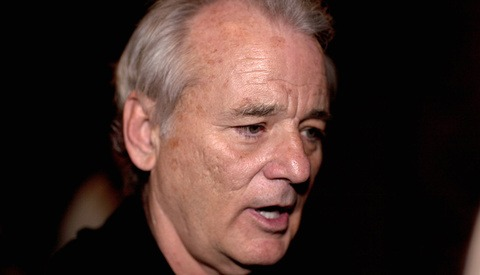 Bill Murray Accosted Photographer on Martha's Vineyard