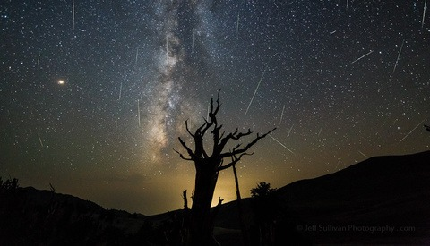 A Baker's Dozen of Impressive Perseid Meteor Shower Captures